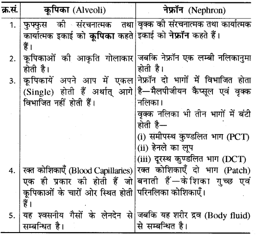 RBSE Solutions for Class 10 Science Chapter 2 12
