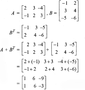 RBSE Solutions for Class 12 Maths Chapter 3 Additional Questions 10.2