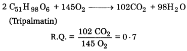 UP Board Solutions for Class 11 Biology Chapter 14 Respiration in Plantsimage 17