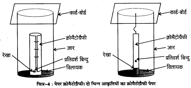 UP Board Solutions for Class 11 Chemistry Chapter 12 Organic Chemistry Some Basic Principles and Techniques img-35