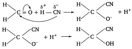 UP Board Solutions for Class 11 Chemistry Chapter 12 Organic Chemistry Some Basic Principles and Techniques img-86