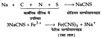 UP Board Solutions for Class 11 Chemistry Chapter 12 Organic Chemistry Some Basic Principles and Techniques img-118
