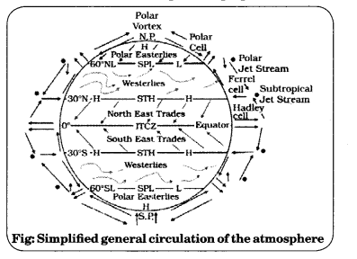 Class 11 Geography NCERT Solutions Chapter 10 Atmospheric Circulation and Weather Systems Q3