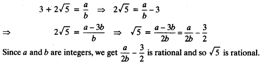 NCERT Solutions for Class 10 Maths Chapter 1 Real Numbers Ex 1.3 1