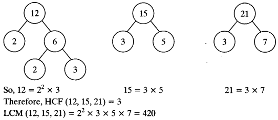 NCERT Solutions for Class 10 Maths Chapter 1 Real Numbers Ex 1.2 9