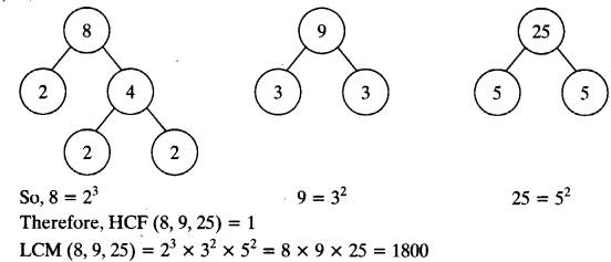 NCERT Solutions for Class 10 Maths Chapter 1 Real Numbers Ex 1.2 11
