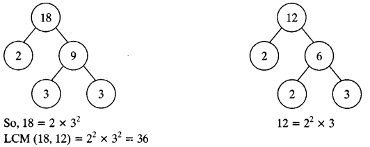 NCERT Solutions for Class 10 Maths Chapter 1 Real Numbers Ex 1.2 14
