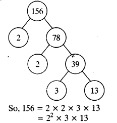 NCERT Solutions for Class 10 Maths Chapter 1 Real Numbers Ex 1.2 2