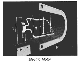 NCERT Solutions for Class 10 Science Chapter 13 Magnetic Effects of Electric Current image - 8