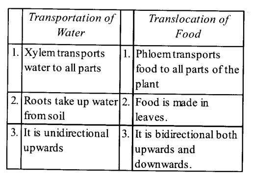 NCERT Solutions for Class 11 Biology Chapter 11 Transport in Plants 12