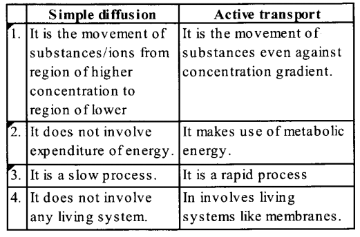 NCERT Solutions for Class 11 Biology Chapter 11 Transport in Plants 14