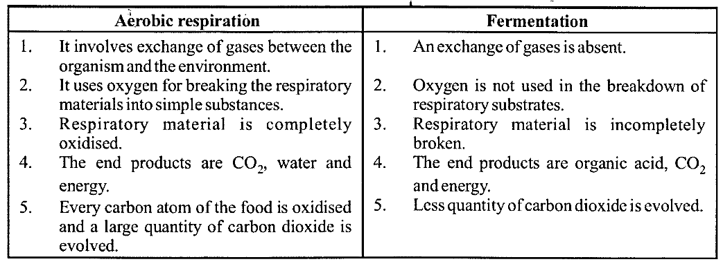 NCERT Solutions for Class 11 Biology Chapter 14 Respiration in Plants 3