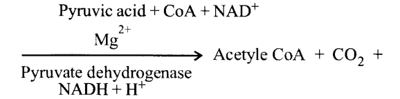 NCERT Solutions for Class 11 Biology Chapter 14 Respiration in Plants 5