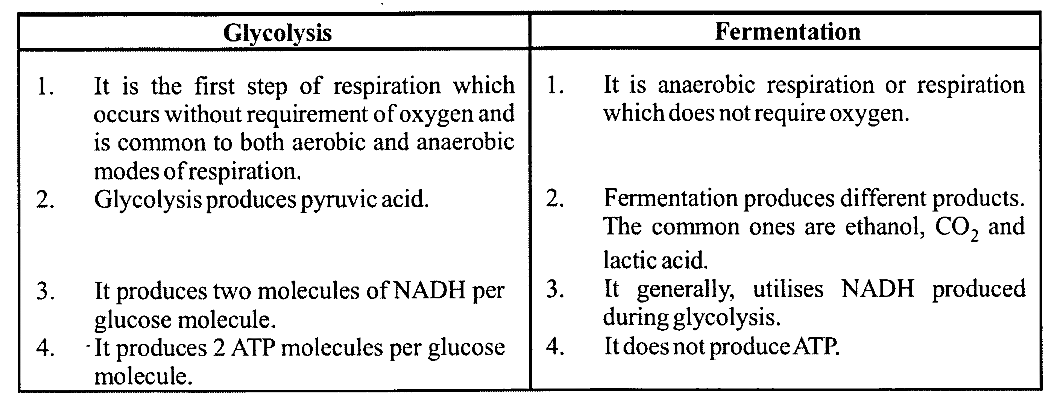 NCERT Solutions for Class 11 Biology Chapter 14 Respiration in Plants 9