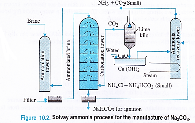 NCERT Solutions for Class 11 Chemistry Chapter 10 The s-Block Elements 33