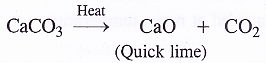 NCERT Solutions for Class 11 Chemistry Chapter 10 The s-Block Elements 35