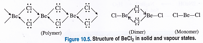 NCERT Solutions for Class 11 Chemistry Chapter 10 The s-Block Elements 54