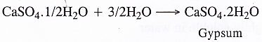 NCERT Solutions for Class 11 Chemistry Chapter 10 The s-Block Elements 57