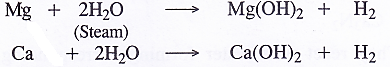 NCERT Solutions for Class 11 Chemistry Chapter 10 The s-Block Elements 9