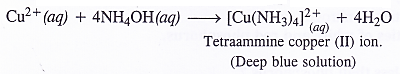 NCERT Solutions for Class 11 Chemistry Chapter 11 The p-Block Elements 49