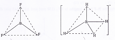 NCERT Solutions for Class 11 Chemistry Chapter 11 The p-Block Elements 7
