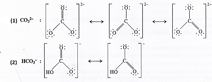 NCERT Solutions for Class 11 Chemistry Chapter 11 The p-Block Elements 8