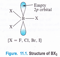 NCERT Solutions for Class 11 Chemistry Chapter 11 The p-Block Elements 1