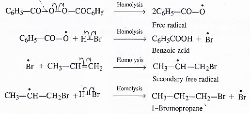 NCERT Solutions for Class 11 Chemistry Chapter 13 Hydrocarbons 20