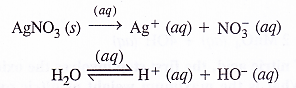NCERT Solutions for Class 11 Chemistry Chapter 8 Redox Reactions 41