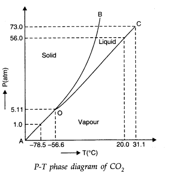 NCERT Solutions for Class 11 Physics Chapter 11 Thermal Properties of matter Q16