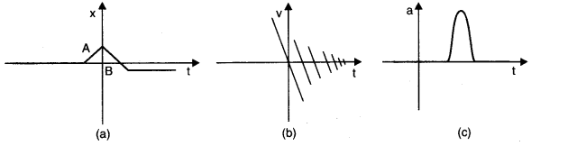 NCERT Solutions for Class 11 Physics Chapter 3 Motion in a Straight Line Q19