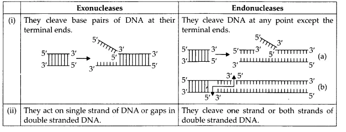 NCERT Solutions for Class 12 Biology Chapter 11 Biotechnology Principles and Processes Q12.1