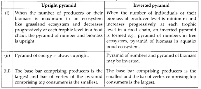 NCERT Solutions for Class 12 Biology Chapter 14 Ecosystem 6.2