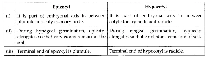 NCERT Solutions for Class 12 Biology Chapter 2 Sexual Reproduction in Flowering Plants Q13.1