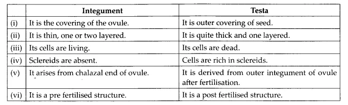NCERT Solutions for Class 12 Biology Chapter 2 Sexual Reproduction in Flowering Plants Q13.3