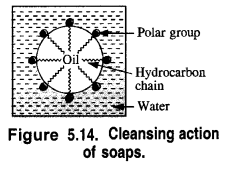 NCERT Solutions for Class 12 Chemistry Chapter 16 Chemistry in Every Day Life t14