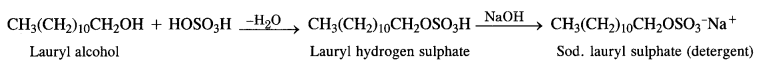 NCERT Solutions for Class 12 Chemistry Chapter 16 Chemistry in Every Day Life t10