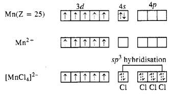 NCERT Solutions for Class 12 Chemistry Chapter 8 d-and f-Block Elements 23
