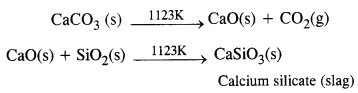NCERT Solutions for Class 12 Chemistry Chapter6 General Principles and Processes of Isolation of Elements 10