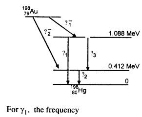 NCERT Solutions for Class 12 Physics Chapter 13 Nuclei 58