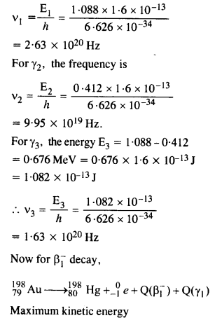 NCERT Solutions for Class 12 Physics Chapter 13 Nuclei 59