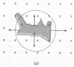 NCERT Solutions for Class 12 Physics Chapter 6 Electromagnetic Induction 3