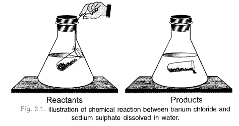 NCERT Solutions For Class 9 Science Chapter 3 Atoms and Molecules 27