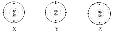 NCERT Solutions for Class 9 Science Chapter 4 Structure of the Atom image - 14