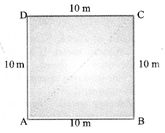 NCERT Solutions for Class 9 Science Chapter 8 Motion image - 1