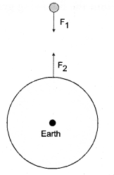 NCERT Solutions for Class 9 Science Chapter 9 Force and Laws of Motion image - 2