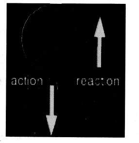 NCERT Solutions for Class 9 Science Chapter 9 Force and Laws of Motion image - 4